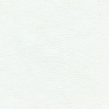 Picture of Avante White