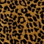 Picture of Leopardo Gold